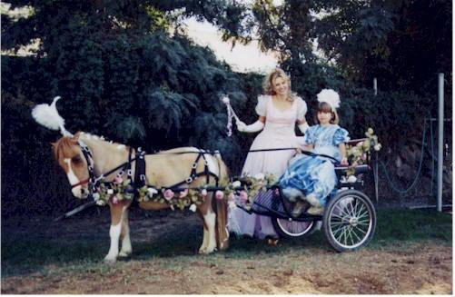 princess horses drawn carrige in the uk