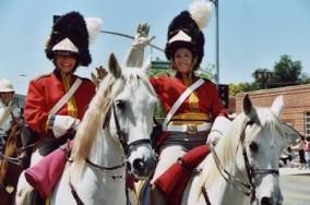 horses_wr