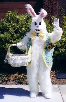 Ivonne as bunny